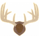 Outdoor Adventures- Sticker- Wall Mounted Antlers