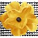 Outdoor Adventures- Yellow Flower