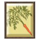 Carrot Brad