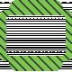 Slide 03- Light Green & Black