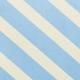 Stripes 26 Paper- Coast Guard