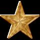 USA Gold Star 2