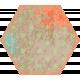 Bee Hexagon 02