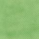Dino Paper- Green Polka Dot