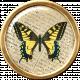 Ephemera Butterfly Brad 08