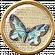 Ephemera Butterfly Brad 09