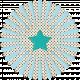 Inspire Paper Flower- Star Center
