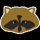 Khaki Scouts Raccoon
