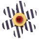 Striped Flower with Jewel