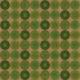 Compass Paper- Green