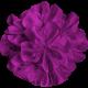 Brighten Up Fabric Flower- Purple
