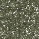 Silver Glitter- Versailles