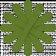 Egypt Flowers- Green