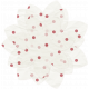Egypt Flowers- Pink & Red Tissue Paper