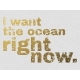 Ocean Right Now- Golden Ocean Journal Card
