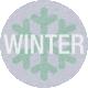 DSA Feb 2014- Winter Coin