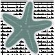 Coastal Starfish- Teal