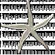 Coastal Starfish- Metal
