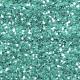 Light Teal Glitter- Earth Day