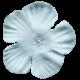Where Flowers Bloom Flower- Light Blue