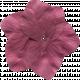 Flower 038