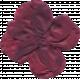 Flower 039