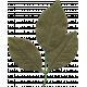 Leaf 015