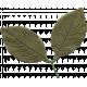 Leaf 017