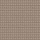 Snowshoe- Snowshoes Paper