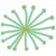Earth Day- Starburst Flower Shape