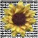 Sunshine & Lemons- Flower