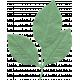 Leaf 015- Hello