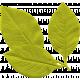 Garden Party Mini Kit- Leaves
