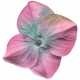 Garden Party Silk Flower- Pink & Blue