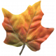 Autumn Art- Leaf