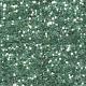 Birds in Snow Glitter- Teal