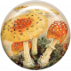 Autumn Art Brad- Mushrooms