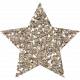 Superlatives Glitter Star 01