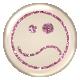 Emoticon Glitter Brad- Pink