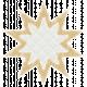 Textured Grunge Star 16