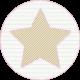 Superlatives Paper Star 18