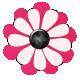 Pink Pink Flower