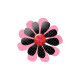 Pink Black Flower