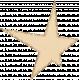 Cream Glitter Star