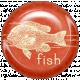 Animal Brad- Fish