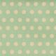 Oh Baby Baby- Big Polkadot Mint Paper