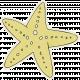 Beachy!- Starfish Sticker