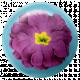 August Garden Party- Purple Flower Brad