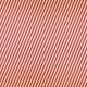 At The Fair- Diagonal Stripes Paper