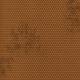 Cast A Spell- Honey Comb- Brown Paper